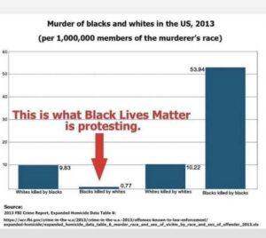 Porcentaje de asesnatos de negros a manos de blancos y viceversa en Estados Unidos